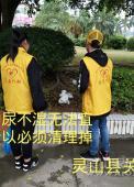30名志愿者开展第五期环保活动灵山县关爱弱势群体协会组织