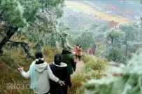 靈山東山嶺