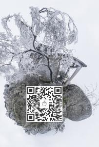 """东山""""下雪""""VR全景图......"""