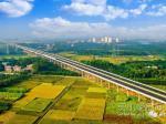 计划2023年通车!灵山即将开展南湛高速规划用地征收工作!