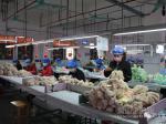 灵山县:精准服务 推动企业复工复产