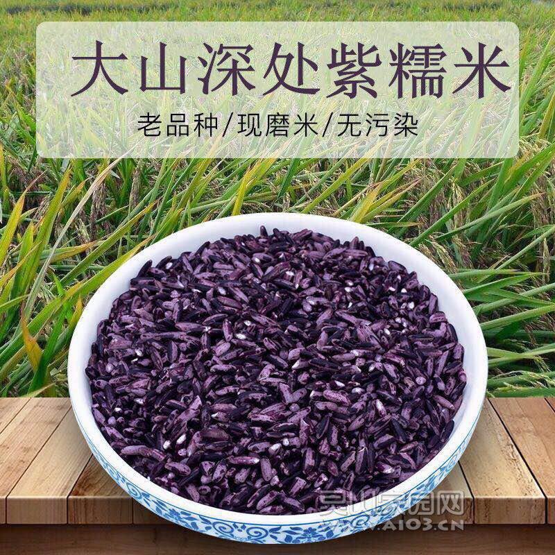 紫米7.jpg