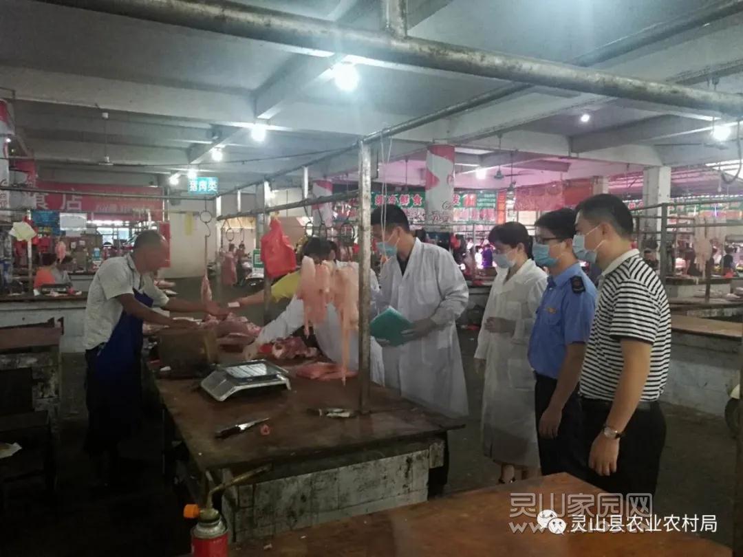 灵山县扎实开展防控非洲猪瘟消毒灭源专项行动