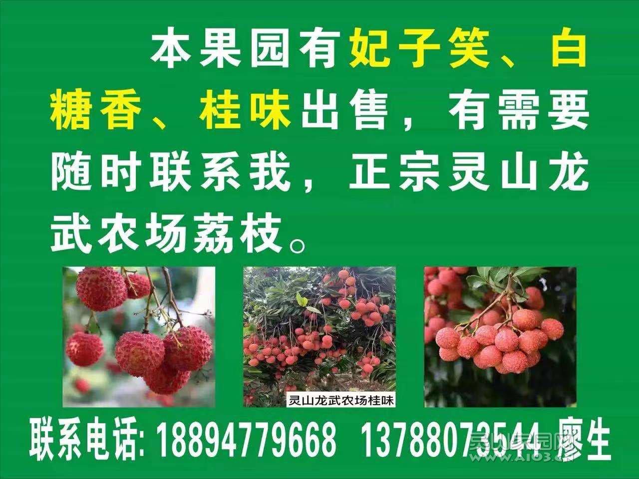 微信图片_20210528150859.jpg