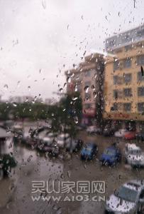 春分过,落雨纷飞~