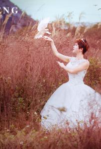 婚紗鳥中情