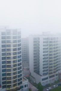 灵山今年第一次出现大雾天