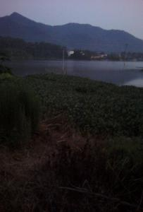 平山镇黄宁村美景