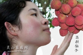 长得很象香港明星佘诗曼的灵山美女
